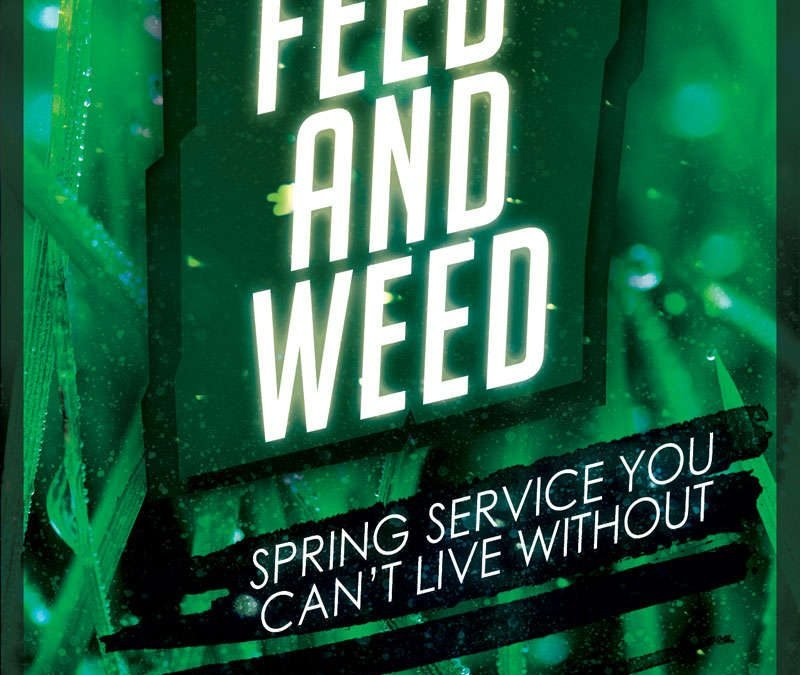 Spring Services Your Lawn Can't Thrive Without
