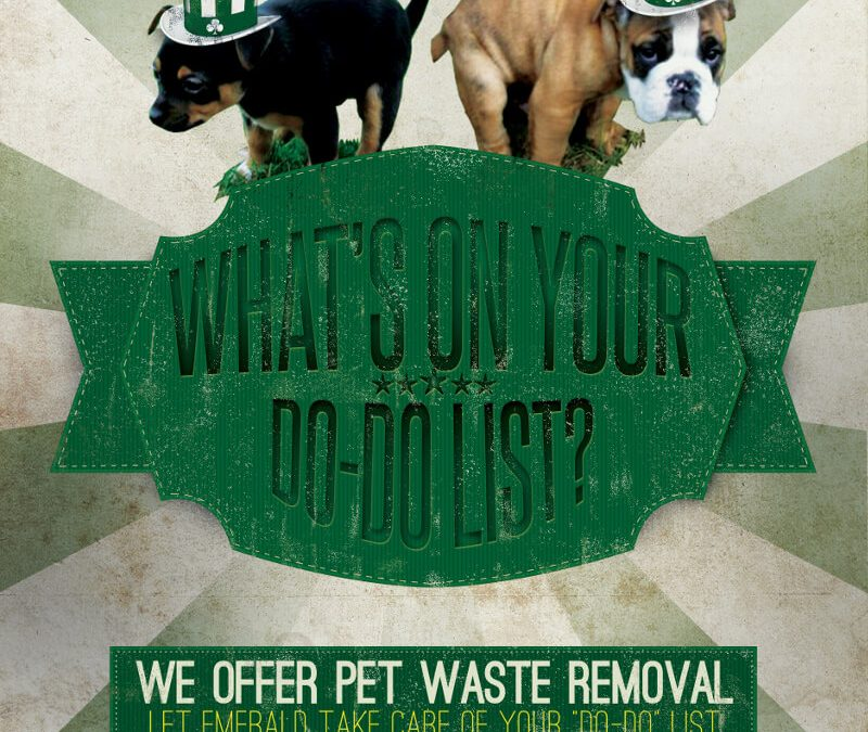 Watch Your Step – Pet Waste Removal