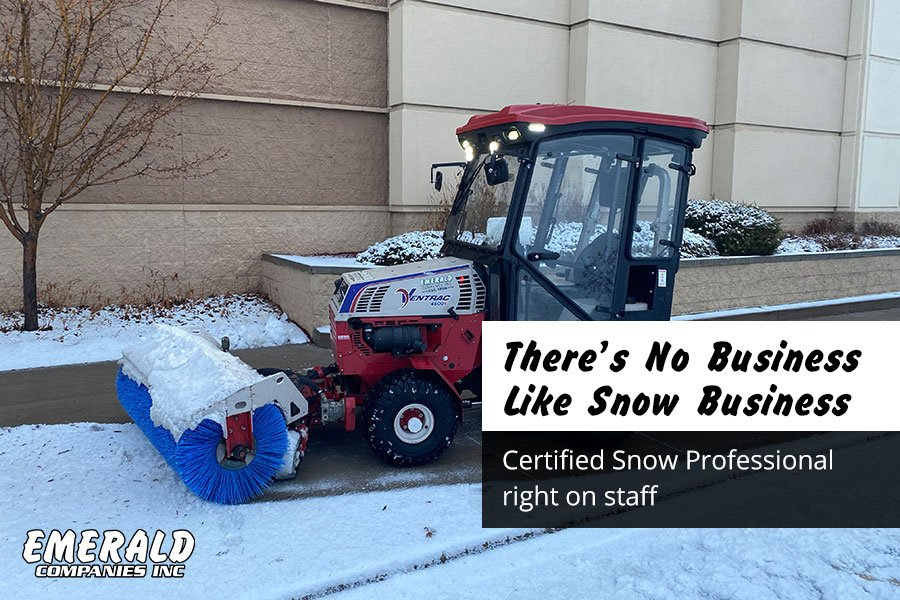 There's No Business Like Snow Business